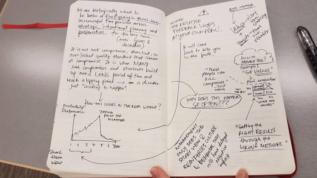 System Dynamics, MIT Sloan, Crystal Cha
